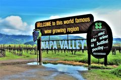 Napa Valley's iconic road sign welcomes visitors to one of the world's premier wine regions. Photo by David Dickstein