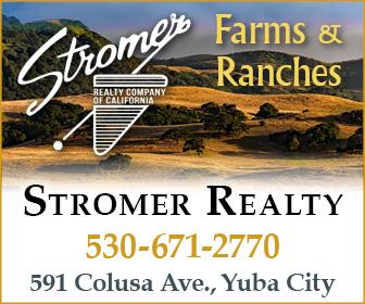 Stromer Realty Ad