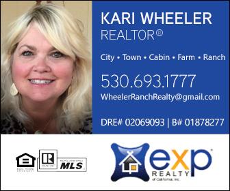 Kari Wheeler Realty Ad