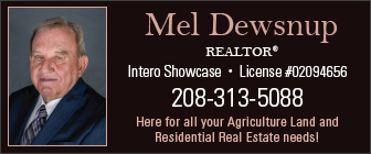 Mel Dewsnup Realty Ad